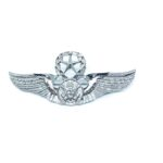 Silver plated Eagle Military Brooch Pin