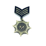 Gold plated Military Pin