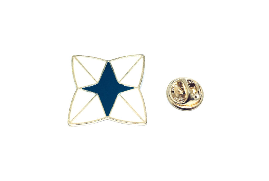 Gold plated Enamel Star Pin