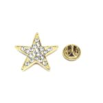 Gold Plated Crystal Star Lapel Pin